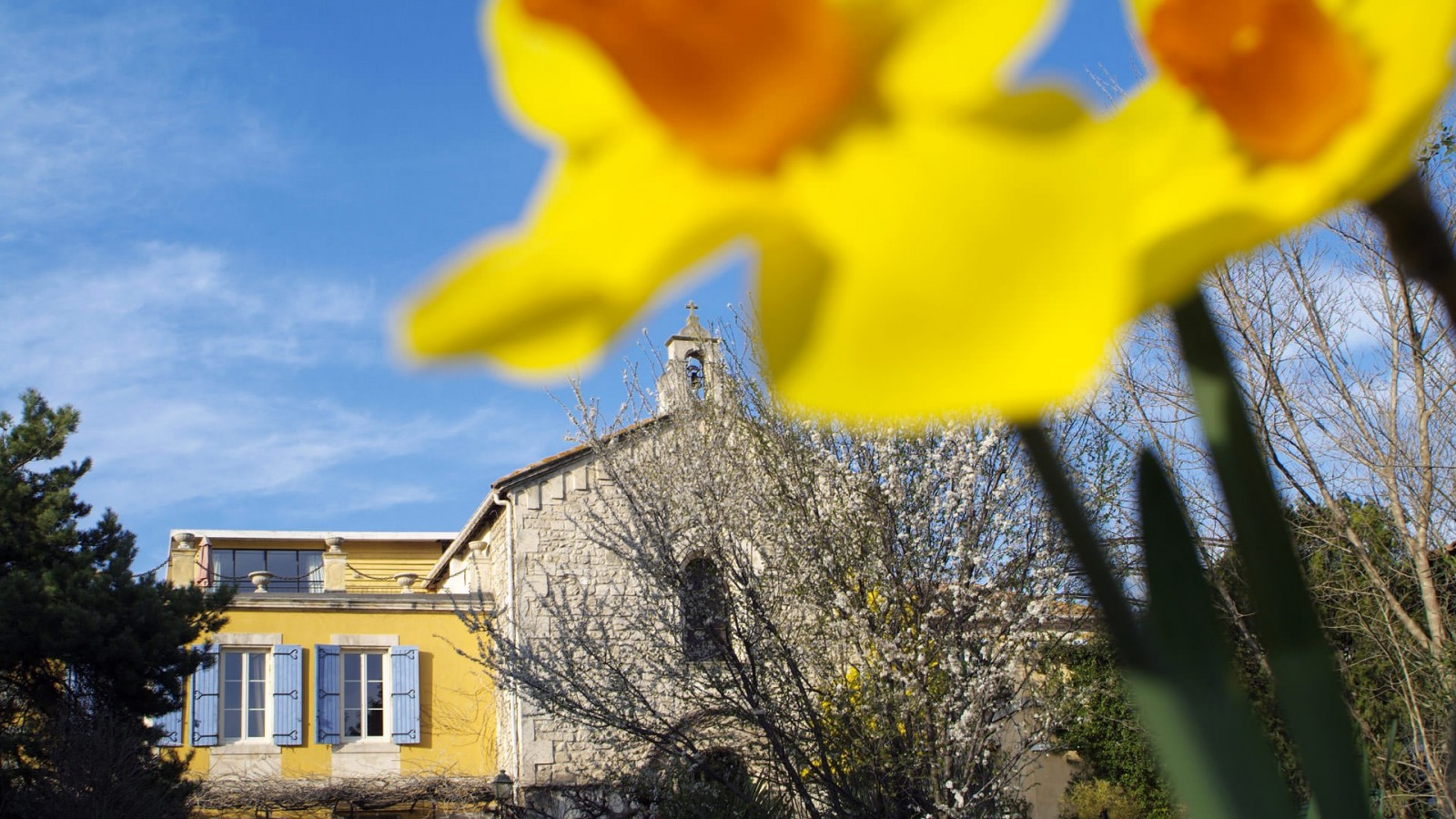 jardin_detente_mas_chapelle4