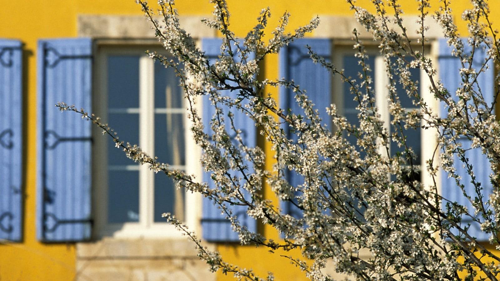 jardin_detente_mas_chapelle6