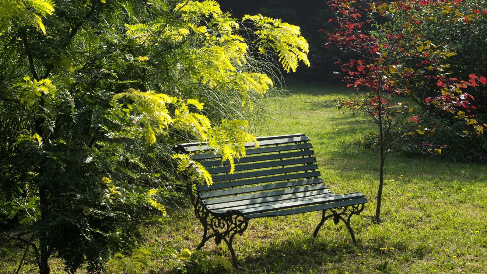 jardin_detente_mas_chapelle10